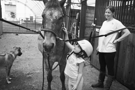 Girl brushing a Pony