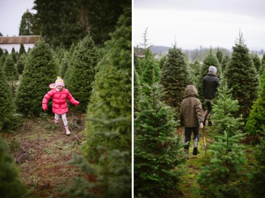 kids at christmas tree farm