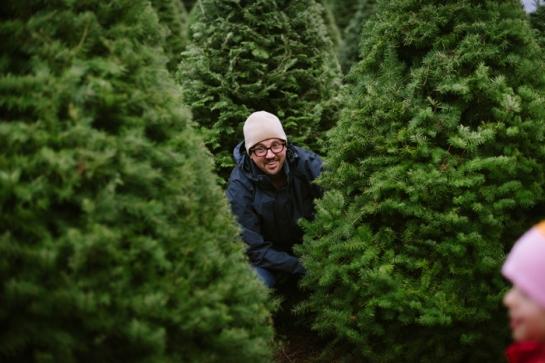 dad cutting down christmas tree