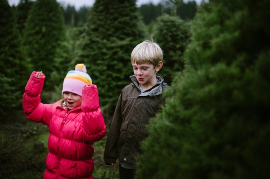 kids cheering for cut down christmas tree