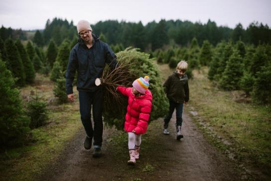 walking with xmas tree