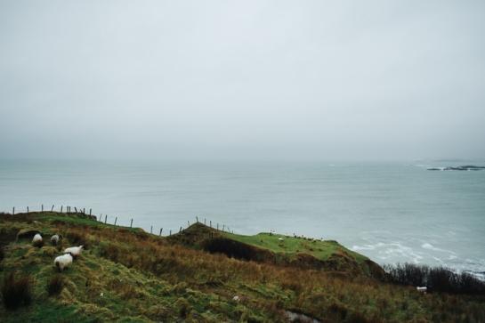 Ireland_0010