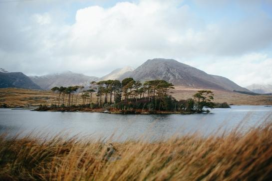 Ireland_0019